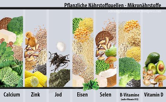 Pflanzliche Nährstoffquellen: Mikronährstoffe