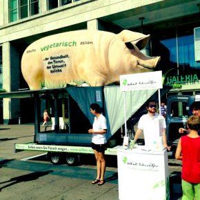 Albert-Schweitzer-Stiftung für unsere Umwelt