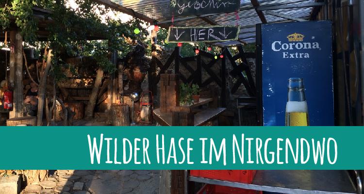 wilderhase-01