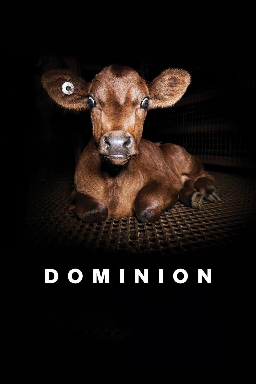 Dominion - Das grauenvolle Handeln der globalen Fleischindustrie