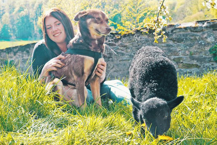 """Ann Christin mit Hund und Schaf - Tierkommunikation - kohlundkarma im Interview mit """"Für Tiere sprechen"""""""