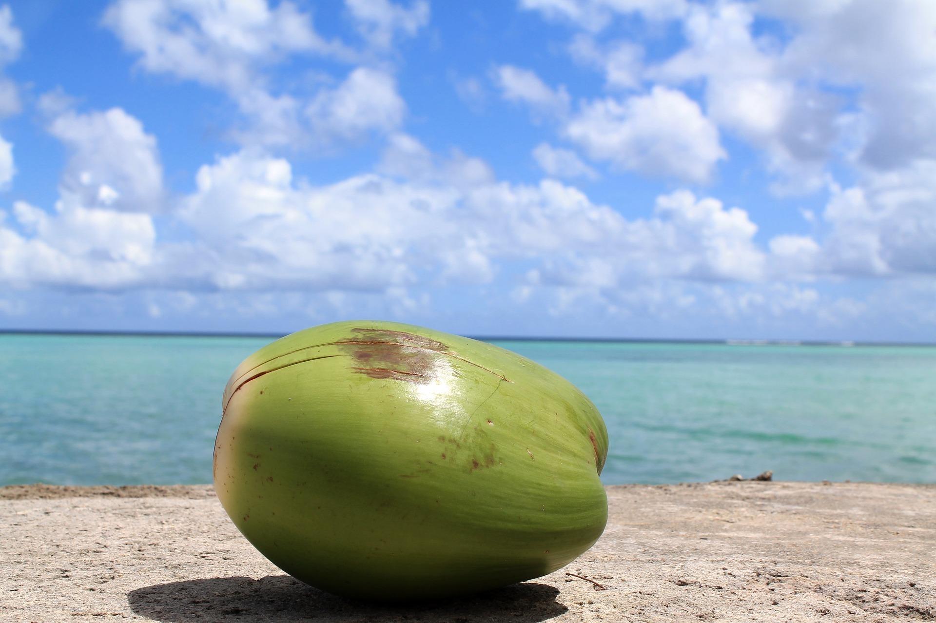 Kulaur Kokoswasser