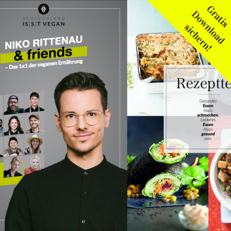 eBook Niko Rittenau and friends
