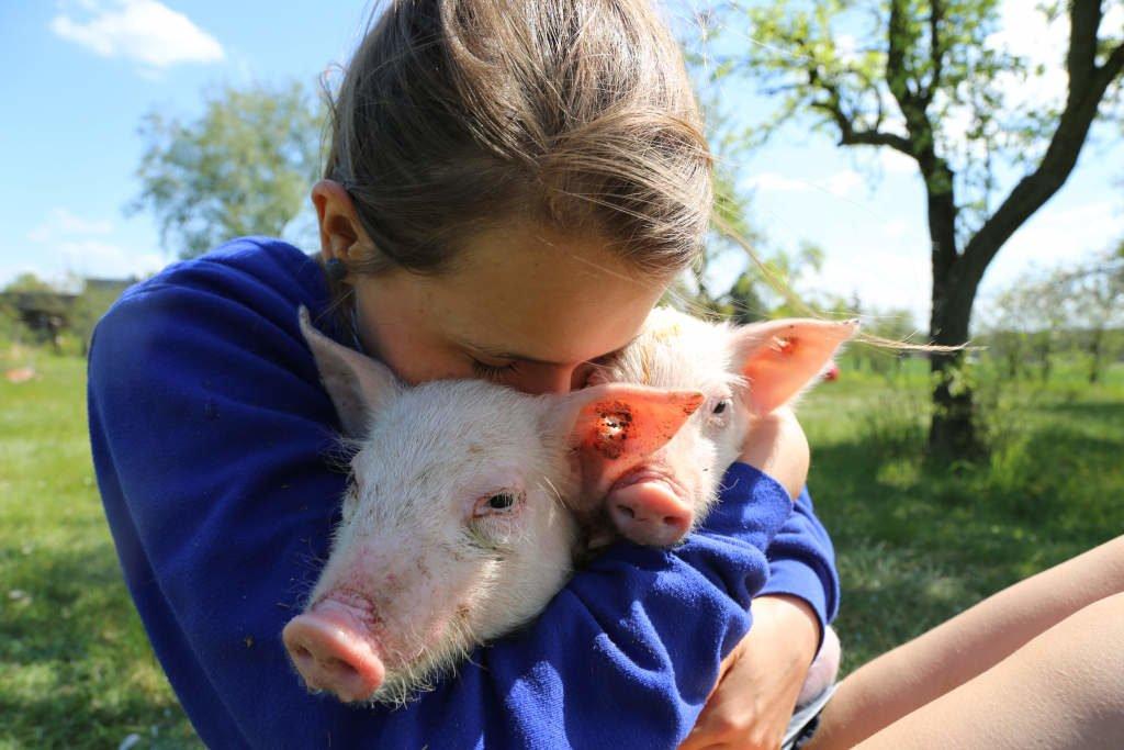 Eine Tierpatenschaft unterstützt direkt die Arbeit des Deutschen Tierschutzbüros Pelzindustrie