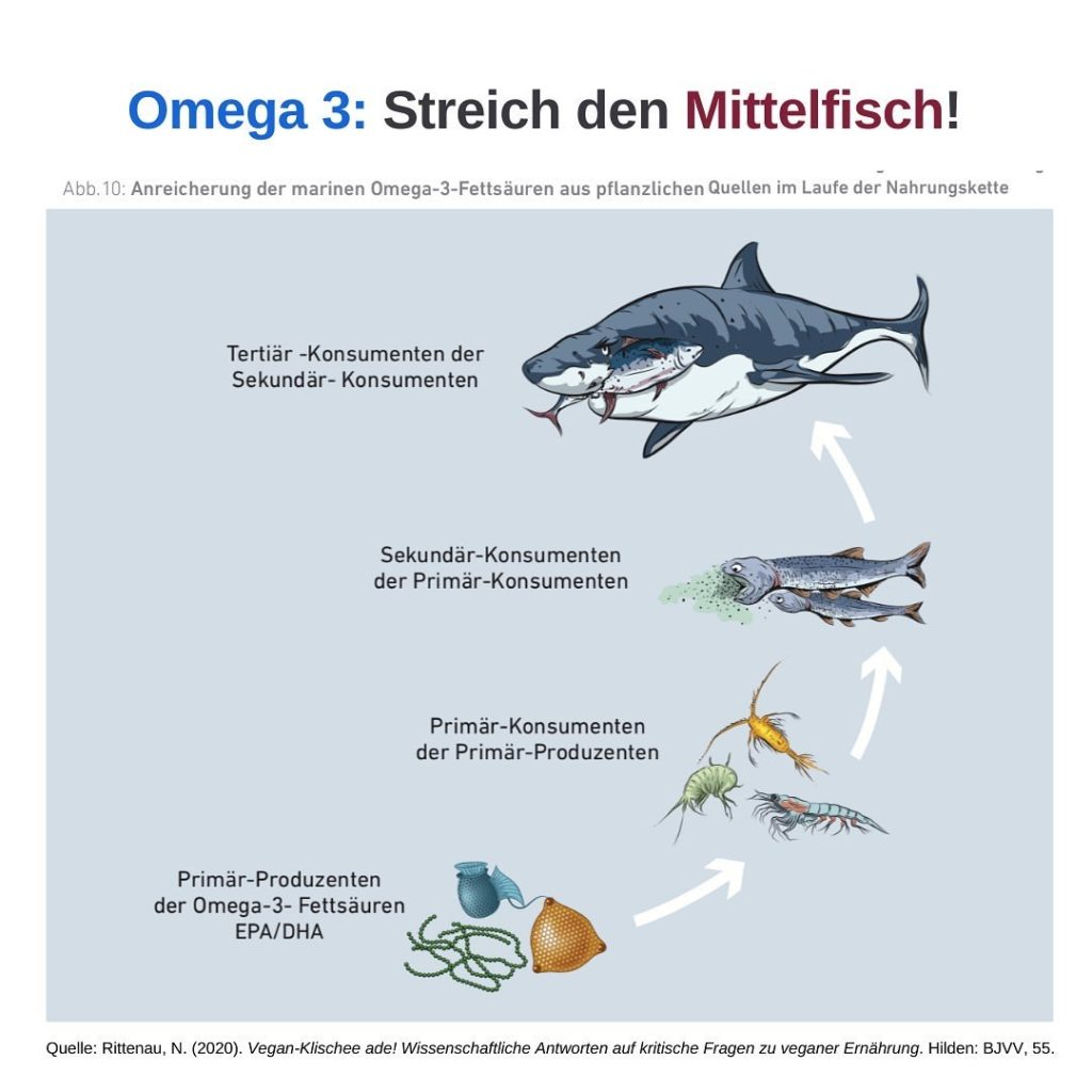 Omega 3 vegan Niko Rittenau