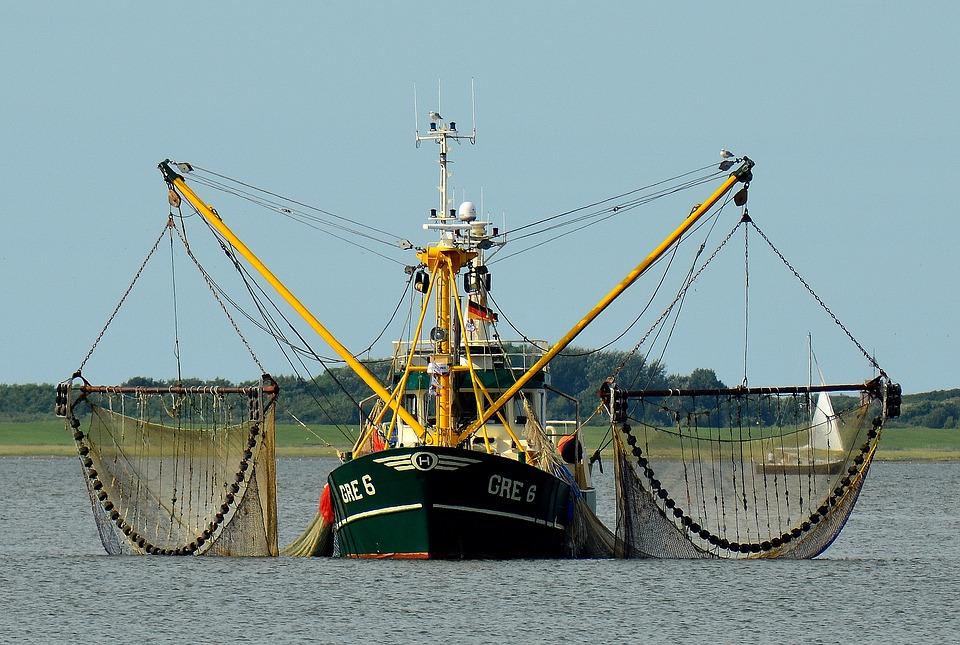 fischfang_überfischung
